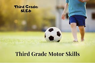 3.S1.E6-Motor Skills.png