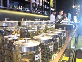 Cannabis/Hemp Insurance Here and Now!