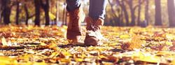 schoenen in bladeren
