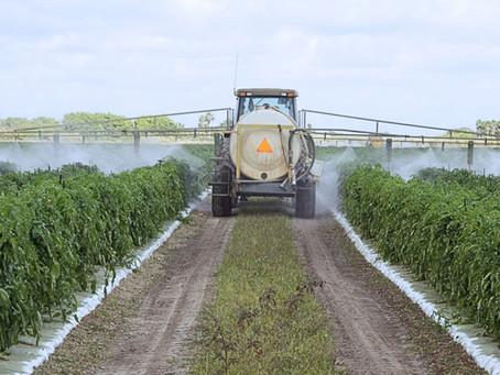 Manger bio pour réduire sa contamination aux pesticides