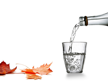 Health Benefits of Maple Water