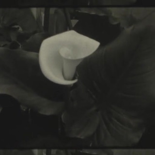 Super 8 black and white film, handpainte
