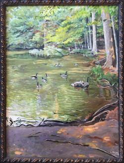 Sunny Day at Burke Lake Park (2005)
