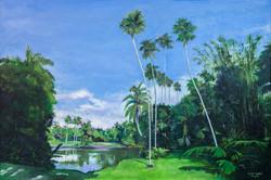 Florida Dreams (2009)
