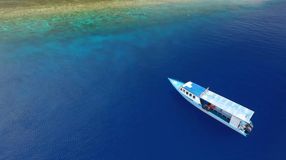 Expeditions_Manado_07_TheOceanAgency.JPG