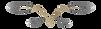 VD_logo_2.png