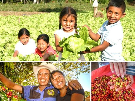 """""""Transformando la Resiliencia de Hogares en Ambientes Vulnerables"""" THRIVE"""