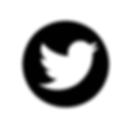 social media icons (2).png