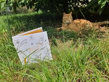 Maurycy lubi książki o sobie