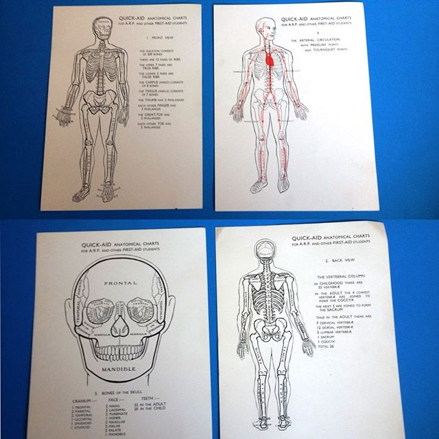 Quick-AID Anatomical Charts for A.R.P