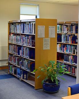 Books2smaller.jpg