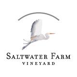 logo-saltwater.png