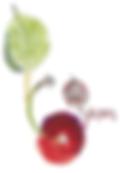 third-annual-cherries-05.png