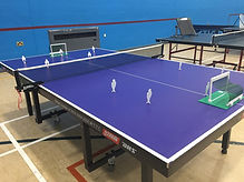 WDHA Table Tennis Club Promotion 1.jpeg