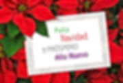 Christmas greeting card with text Feliz