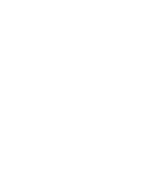 Seido Hollywood Dojo logo