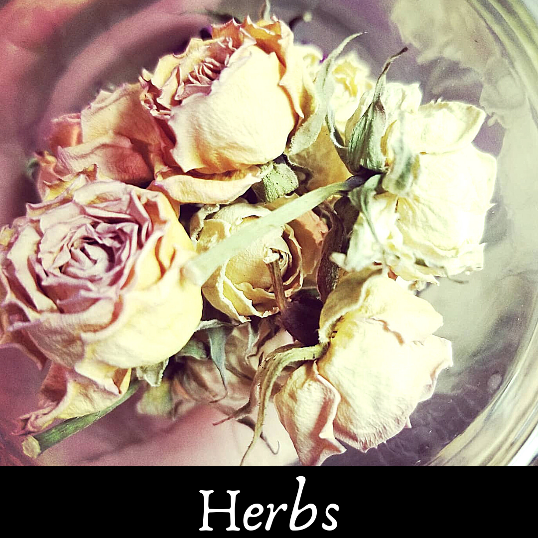 SQ-Herbs.png