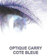 Optique CARRY2.jpg