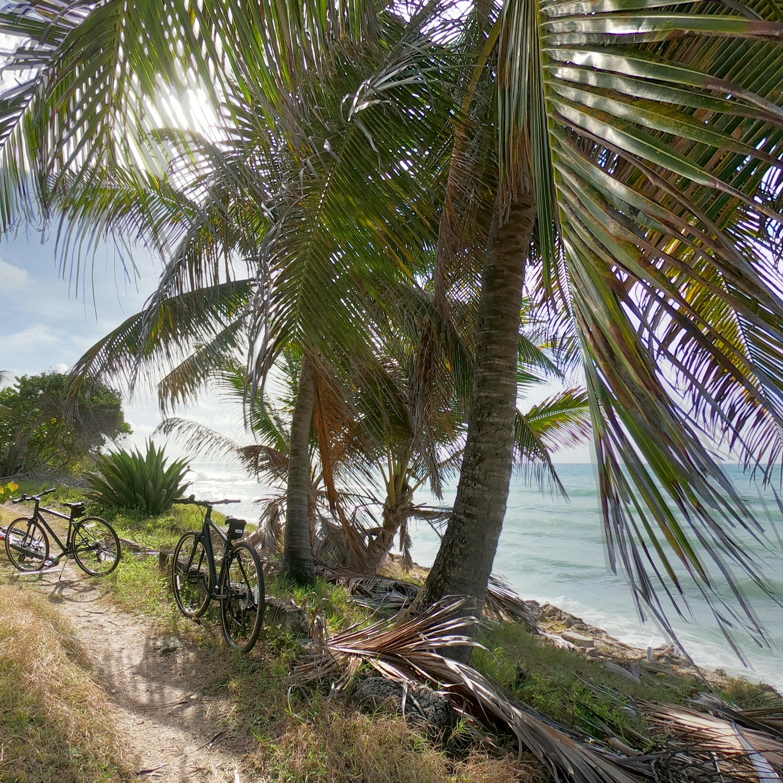 Island Tour : Bicycle / EBike Tour