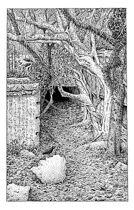 "The Ink Trail - ""Quiet Ruins"" - Limited Edition of 50"