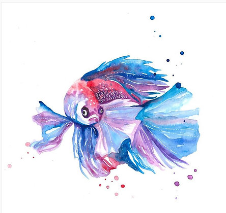 """The Quiet Place - """"Betta Fish"""" - Open Edition Print"""