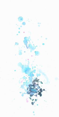 Cosmos (2)