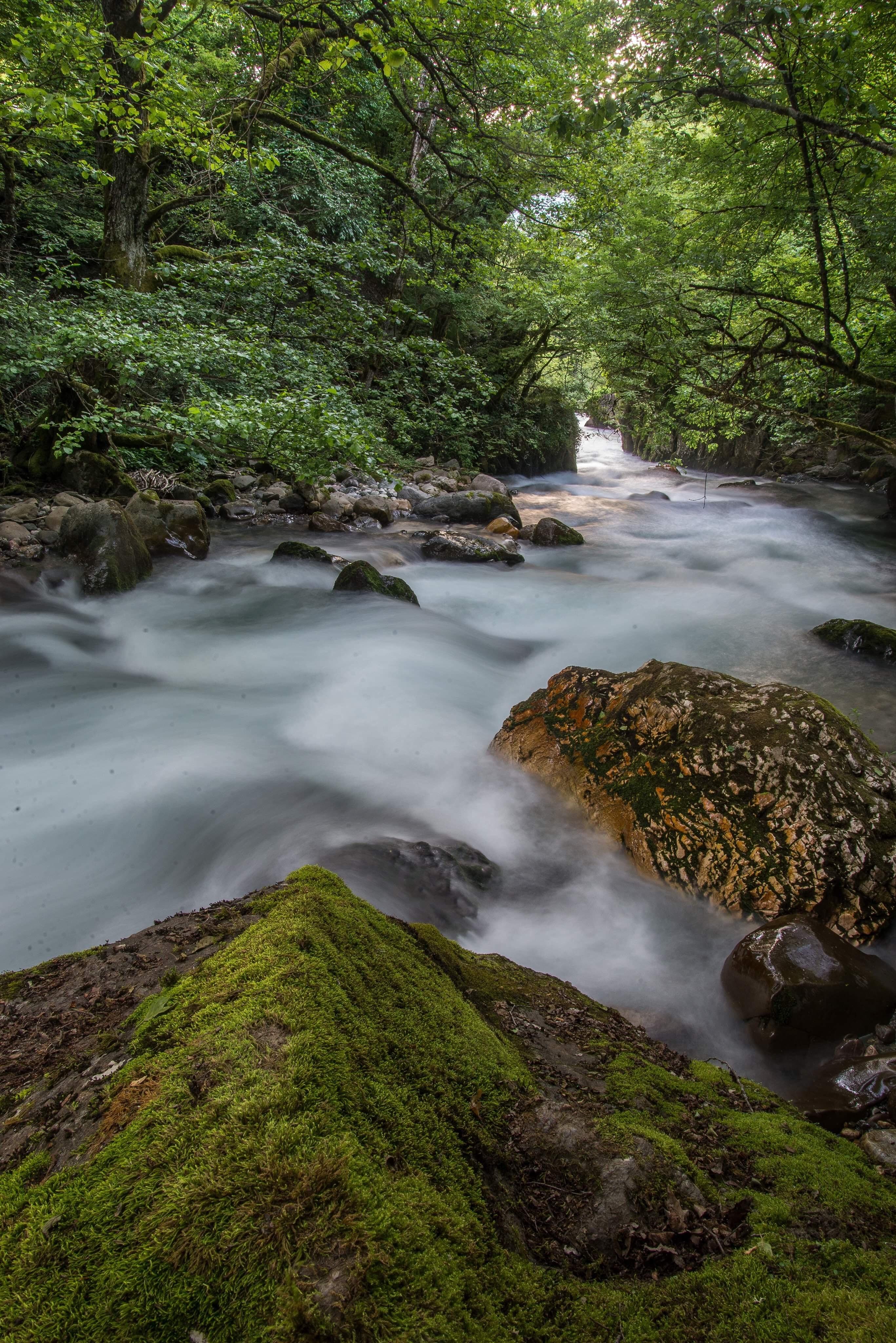 Creativity: Your Deep River Inside