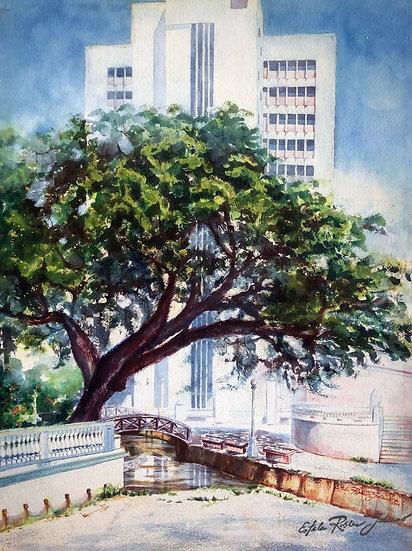 """""""El Parterre, Aguadilla, Puerto Rico, 1994"""" Original"""
