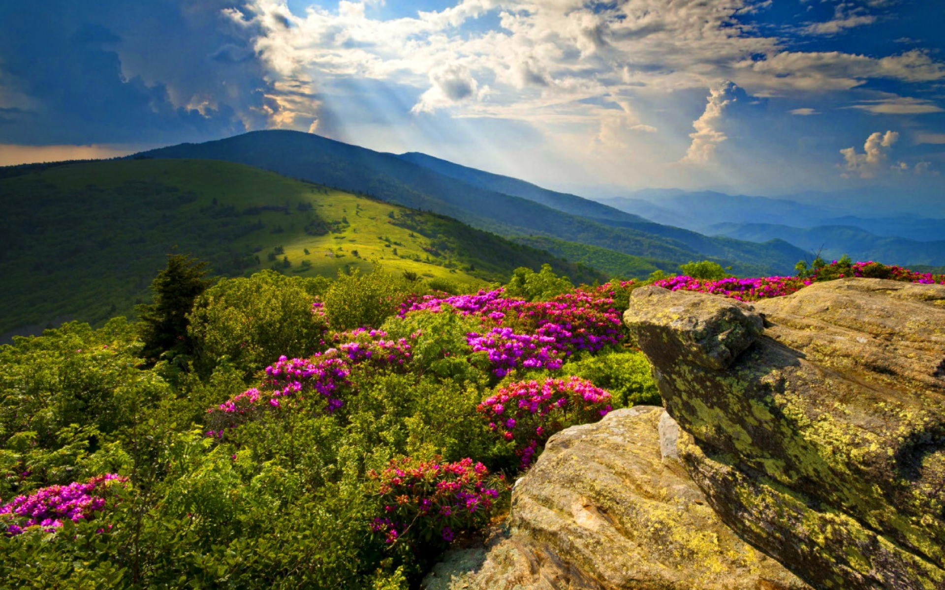 HD Wallpapers Blue Ridge Mountains Mount