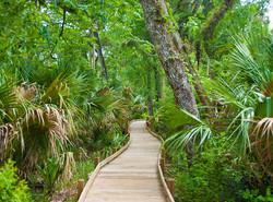Juniper-Creek-Nature-Trail