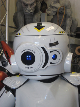 Video Game robot