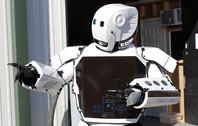 Refrigerator robot
