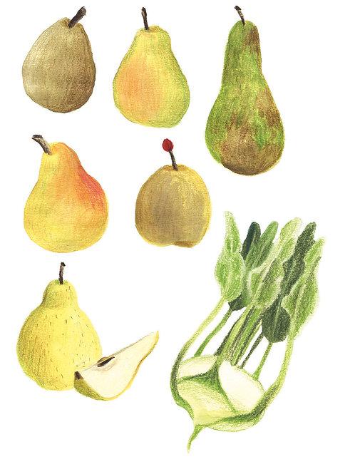 Fruits et légumes - Original 16