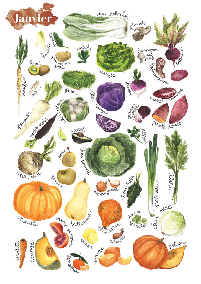 Fruits et légumes de saison, Janvier