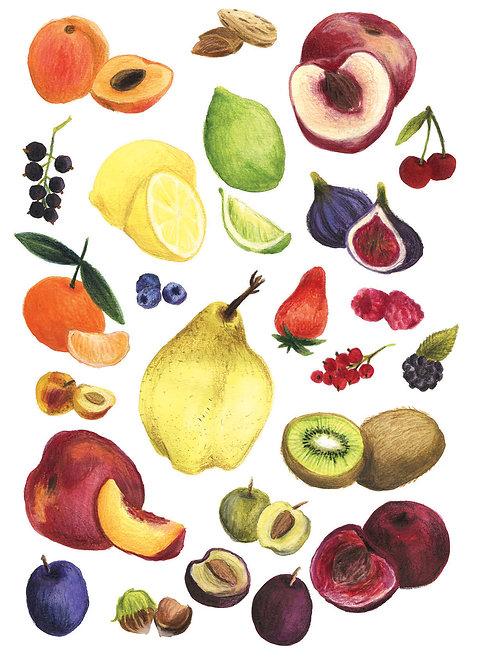 Fruits et légumes - Original 12