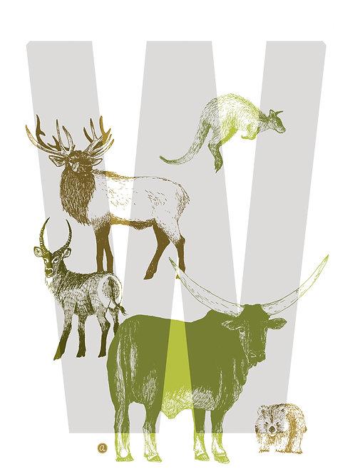 Alpha-bêtes - Lettre W