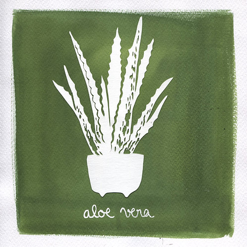 We will plant you - Original 05 - Aloe vera