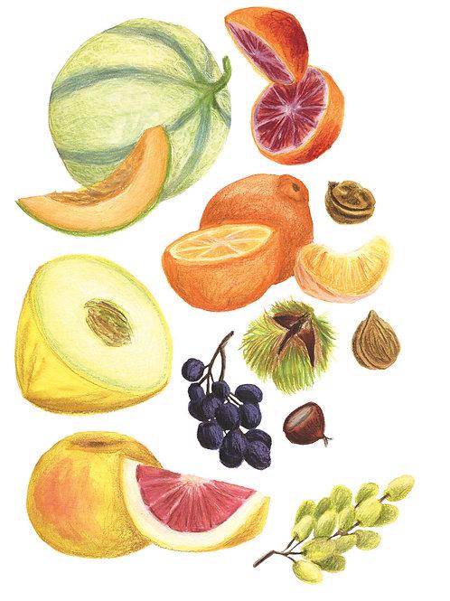 Fruits et légumes - Original 13