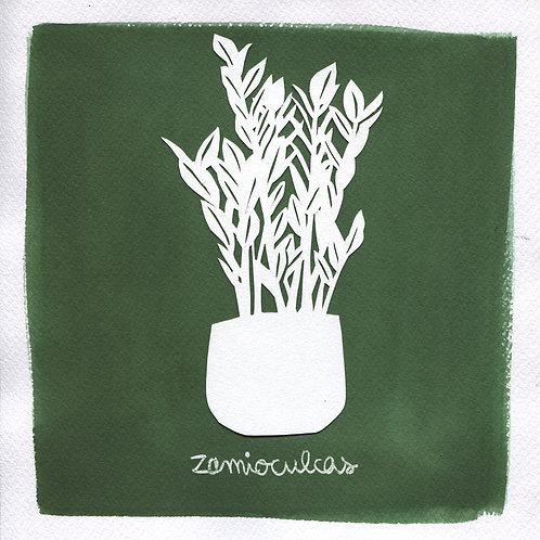 We will plant you - Original 18 - Zamioculcas