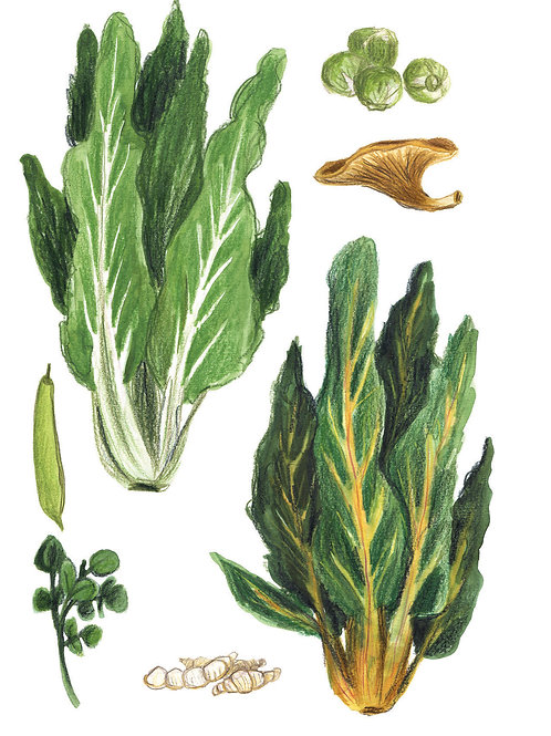 Fruits et légumes - Original 02