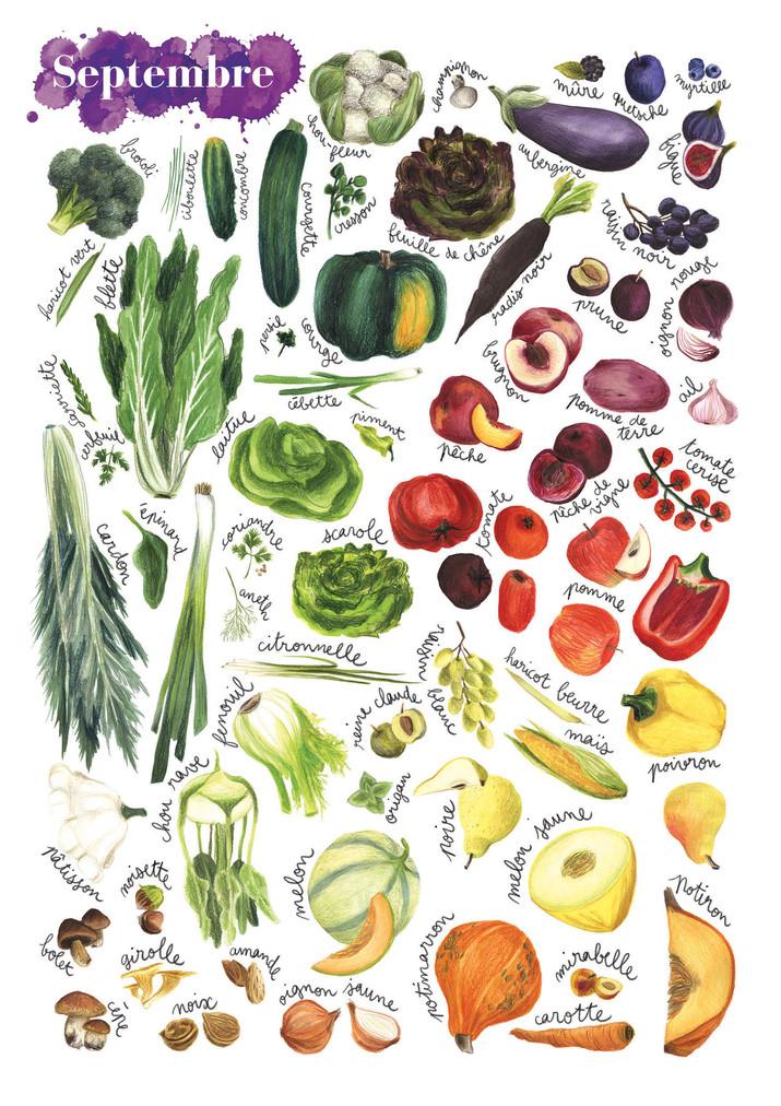 Fruits et légumes de saison, Septembre