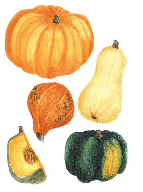 Fruits et légumes - Original 06