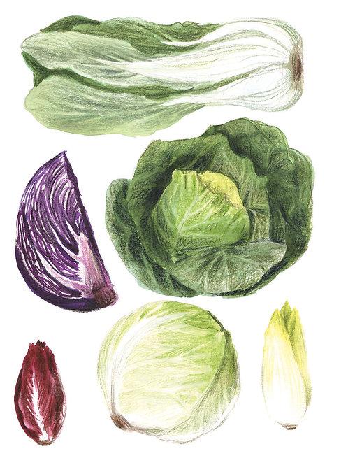 Fruits et légumes - Original 04