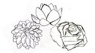 Daliah, Lotus, & Rose
