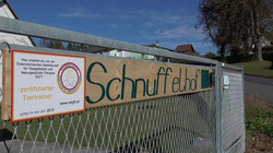 Schnuffelhuf frontal.JPG