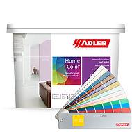 Aviva Home-Color