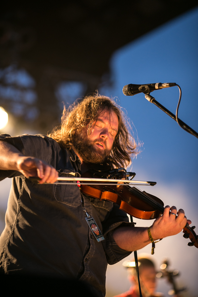Trampled By Turtles Fiddle