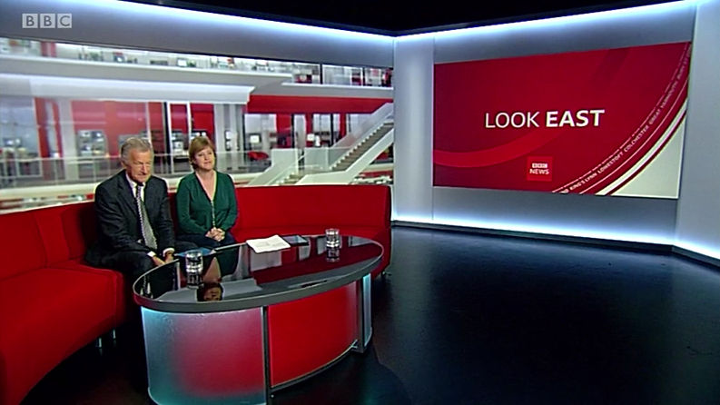 Elsa James Artist | BBC Look East studio guest