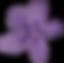 wildflower violet.png