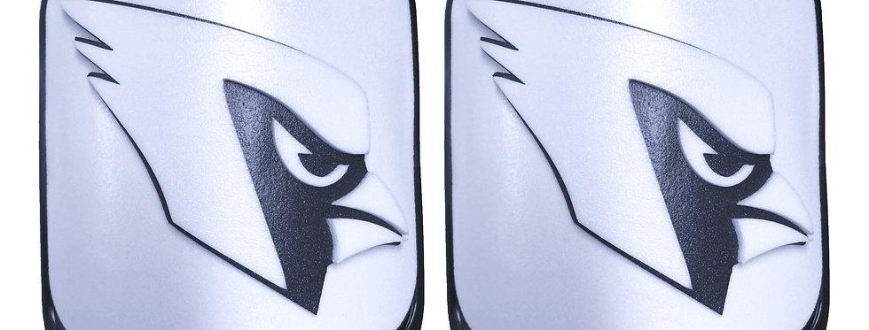 Cardinal or Blue Jay